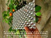 铝网板、拉伸网(装饰防护)_装饰网板
